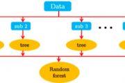 Random Forest, ein Algorithmus des Machine Learnings